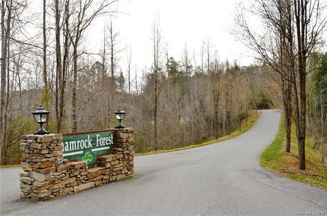 00 Dunigan Drive Lot 51, Columbus, NC 28722 (#3182398) :: LePage Johnson Realty Group, LLC
