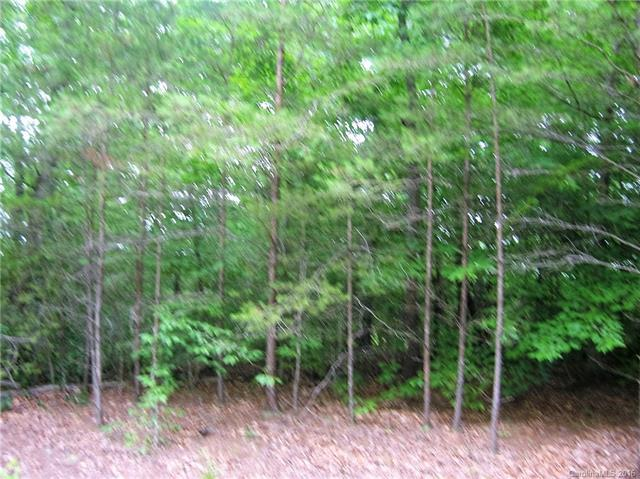 #37 Beechwood Circle, Rutherfordton, NC 28139 (#3184615) :: Exit Mountain Realty
