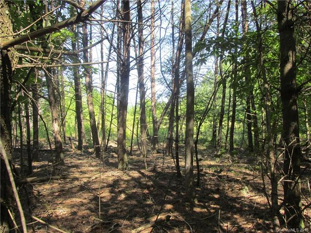 9999 Cottage Park Road #3, Morganton, NC 28655 (#3190175) :: SearchCharlotte.com