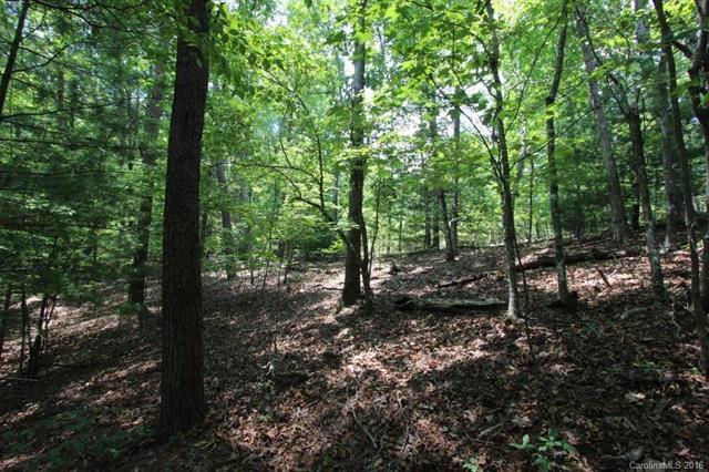 0 E Leaf Point Drive E Lot 25, Lake Lure, NC 28746 (#3191204) :: Puffer Properties