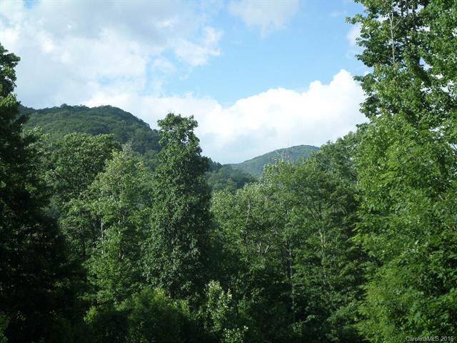 104 Tenderfoot Trail #104, Maggie Valley, NC 28751 (#3195284) :: MECA Realty, LLC