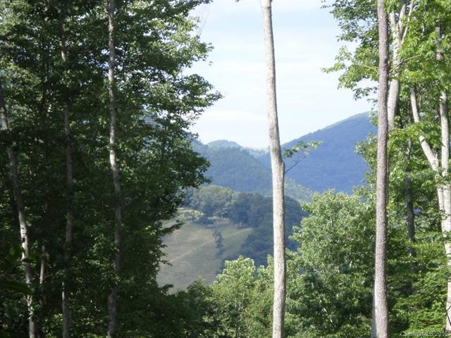 109 Tenderfoot Trail #109, Maggie Valley, NC 28751 (#3195471) :: Rinehart Realty