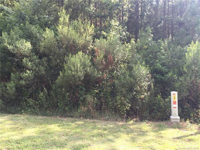 000 Jaida Lane #18, Oakboro, NC 28129 (#3195778) :: Exit Realty Vistas