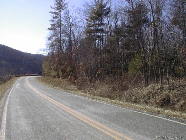 0 Little Buck Hill Road - Photo 1