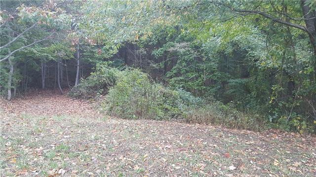 Lot 21 Seasons Drive, Clyde, NC 28721 (#3207999) :: Caulder Realty and Land Co.