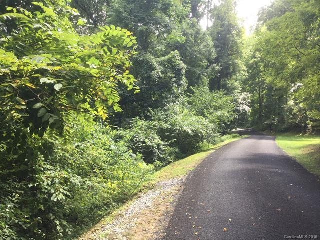 174 Mount Hebron Road #36, Hendersonville, NC 28739 (#3210640) :: LePage Johnson Realty Group, LLC