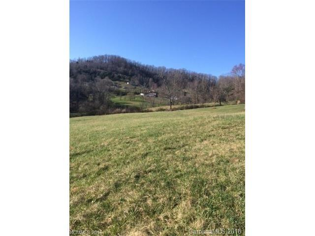 2 Oak Lane, Mars Hill, NC 28754 (#3212011) :: High Performance Real Estate Advisors