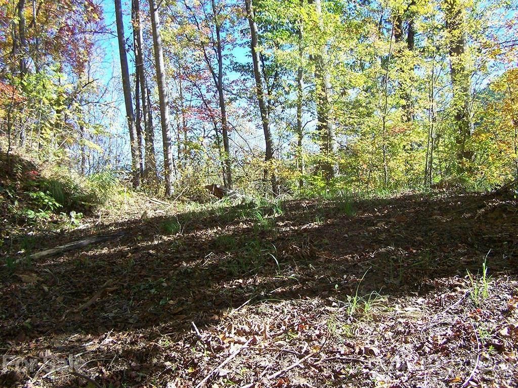 Lot 71 Running Deer Lane - Photo 1