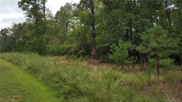 TBD (lot 65) West Lake Road Lot 65, Marion, NC 28752 (#3215589) :: Puffer Properties