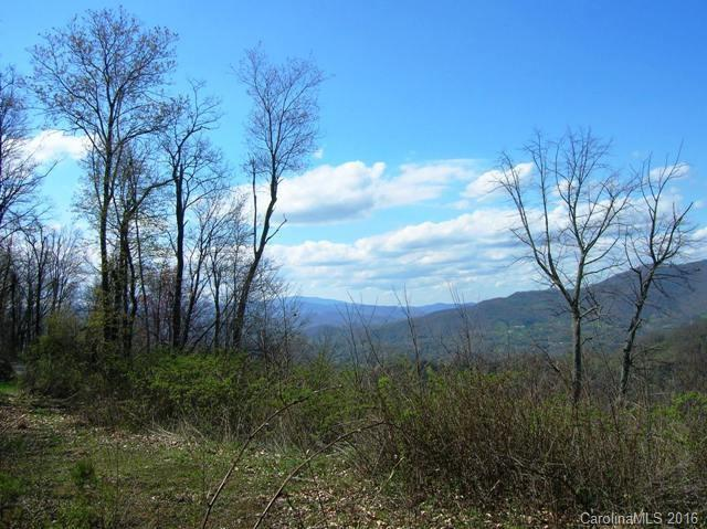 Lot #23 Gap Road, Waynesville, NC 28786 (#3216040) :: Exit Mountain Realty