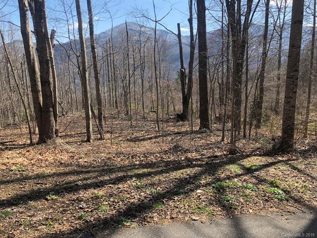 Lot 14 & 14A Blackberry Lane, Maggie Valley, NC 28751 (#3219382) :: LePage Johnson Realty Group, LLC