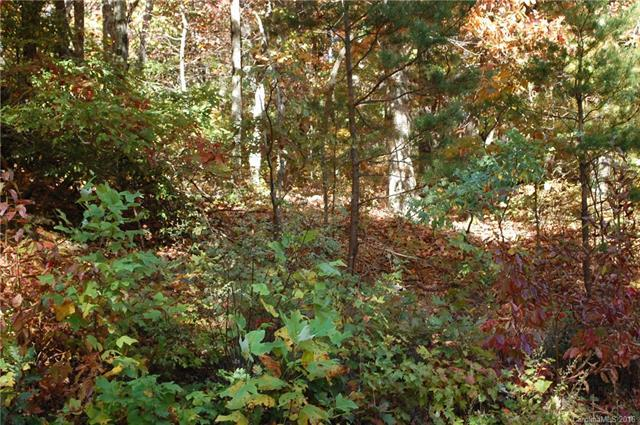 999 White Oak Mountain Road #36, Columbus, NC 28722 (#3221535) :: LePage Johnson Realty Group, LLC