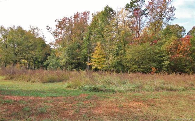 105 Lake Mist Drive, Belmont, NC 28012 (#3230470) :: MECA Realty, LLC