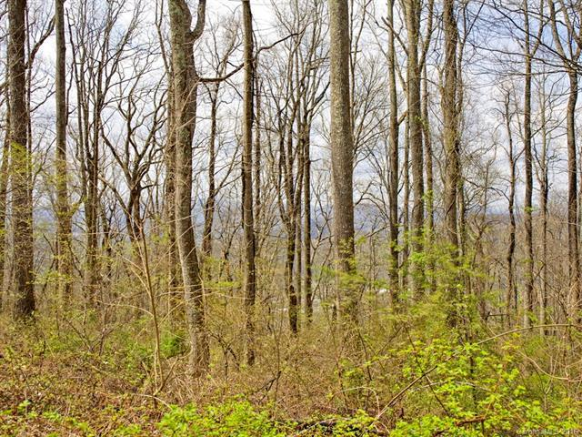 99999 Old Forest Drive Lot 1C, Asheville, NC 28803 (#3232242) :: Rinehart Realty