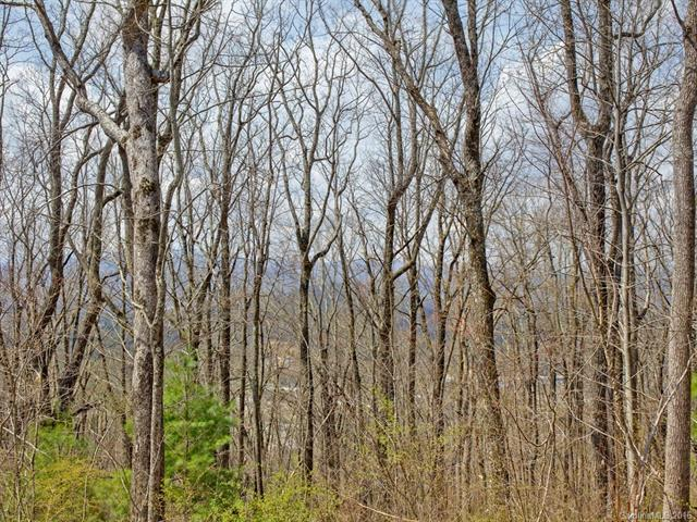 138 Old Forest Drive Lot 7, Asheville, NC 28803 (#3232253) :: Rinehart Realty