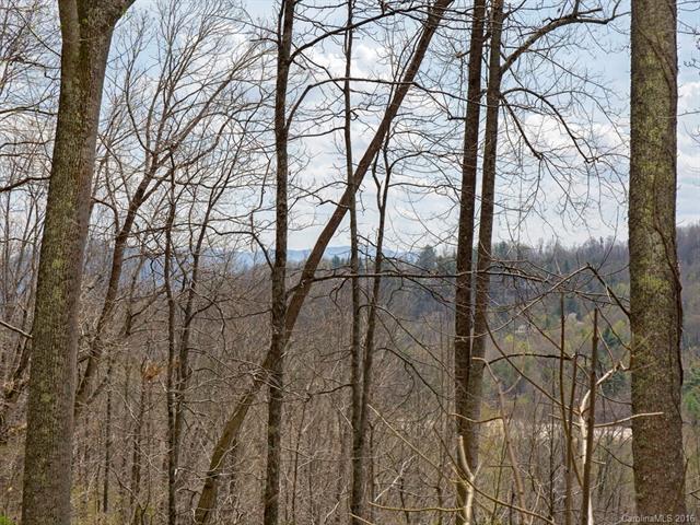 44 Giffords Lane #17, Asheville, NC 28803 (#3232337) :: Rinehart Realty