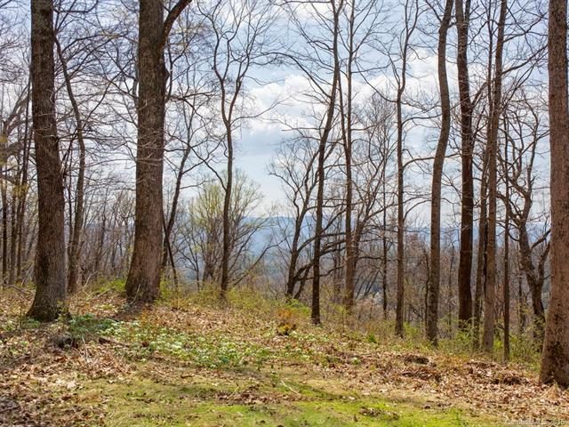 99999 Old Forest Drive Lot 2, Asheville, NC 28803 (#3232350) :: Rinehart Realty