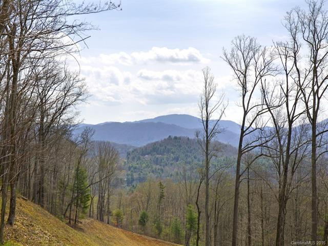 75 Old Forest Drive Lot 1, Asheville, NC 28803 (#3232370) :: Rinehart Realty