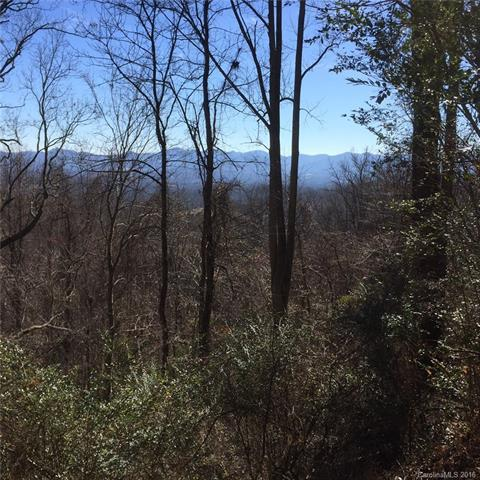 112 Wilderness Trail, Candler, NC 28715 (#3235942) :: Rinehart Realty