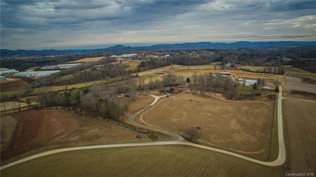 448 Butler Farm Road S, Mills River, NC 28759 (#3237369) :: The Elite Group