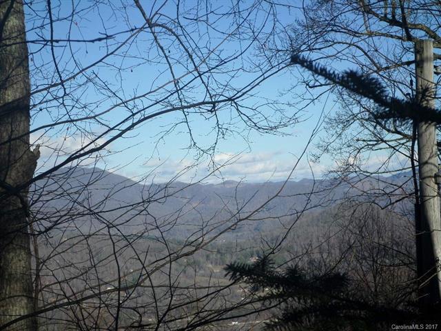 00 Heaths Peak Road 5824 &7965, Waynesville, NC 28785 (#3245834) :: Puffer Properties