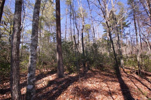 Lot 30 Oconee Bell Lane #30, Brevard, NC 28712 (#3245881) :: MECA Realty, LLC