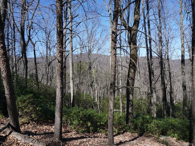 LOT 302 Quail Ridge Road #302, Lake Lure, NC 28746 (#3246200) :: LePage Johnson Realty Group, LLC