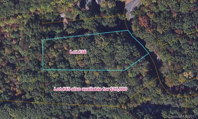 00 Duck Pond Lane #36, Columbus, NC 28722 (#3247164) :: Exit Mountain Realty