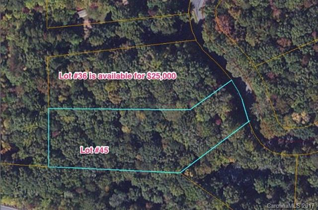 0 Duck Pond Lane #45, Columbus, NC 28722 (#3247274) :: Exit Mountain Realty