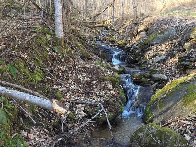 Lot 22 Crystal Tree Drive, Waynesville, NC 28785 (#3249905) :: Exit Mountain Realty