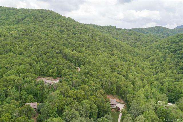 10 Alpine Ridge, Canton, NC 28716 (#3250328) :: Zanthia Hastings Team