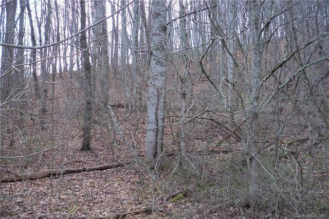 Lot 61 Turn-A-Bout Court, Waynesville, NC 28785 (#3253829) :: Puffer Properties