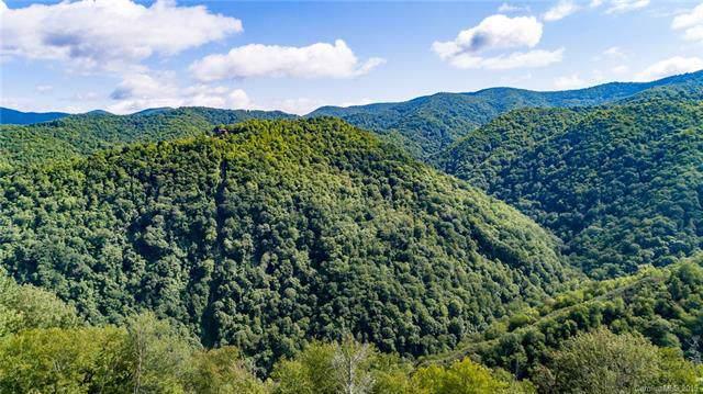 0000 Bearwallow Ridge Trail - Photo 1