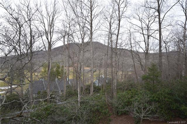 000 South Toe River Road, Burnsville, NC 28714 (#3254168) :: LePage Johnson Realty Group, LLC