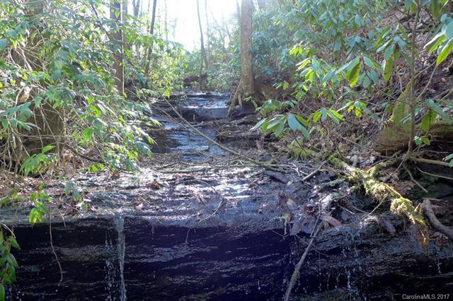 00 Steel Creek Road, Brevard, NC 28712 (#3254632) :: Exit Mountain Realty