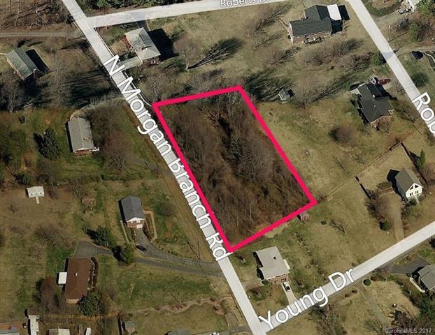 9999 Morgan Branch Road N, Candler, NC 28715 (#3256660) :: LePage Johnson Realty Group, LLC