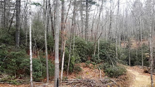 0 High Peak Drive, Hendersonville, NC 28739 (#3259128) :: Rinehart Realty