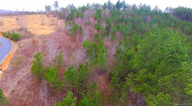 Lot 37 Clearwater Drive, Nebo, NC 28761 (MLS #3262205) :: RE/MAX Journey