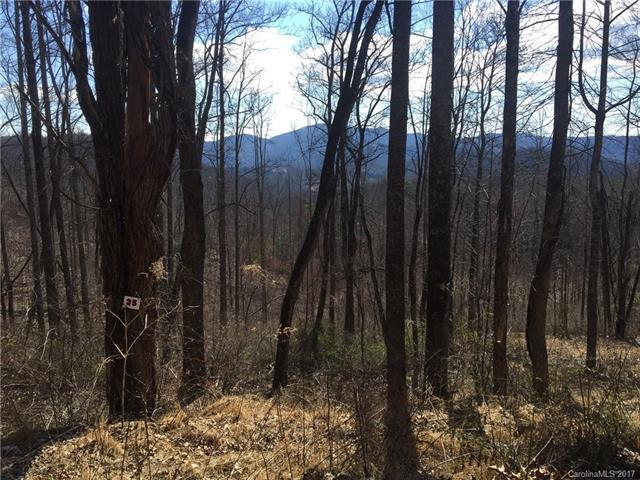 TBD LOT# 35 Laurel Creek Drive #35, Hendersonville, NC 28792 (#3263619) :: The Premier Team at RE/MAX Executive Realty