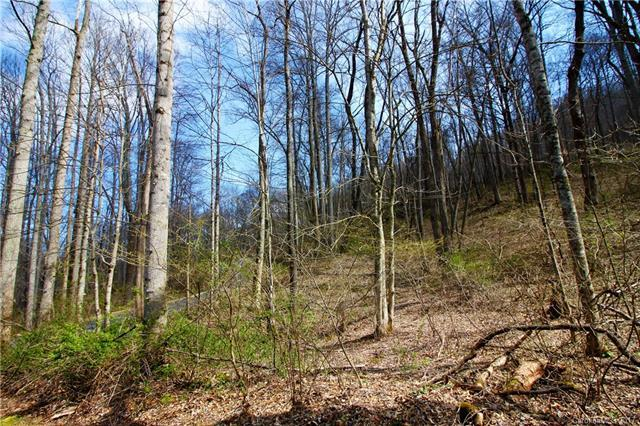 Lot 16 April Park, Waynesville, NC 28786 (#3263702) :: Zanthia Hastings Team