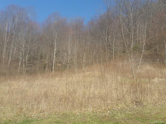 Lots 35 & 36 Triple Creek Drive, Clyde, NC 28721 (#3264690) :: MartinGroup Properties