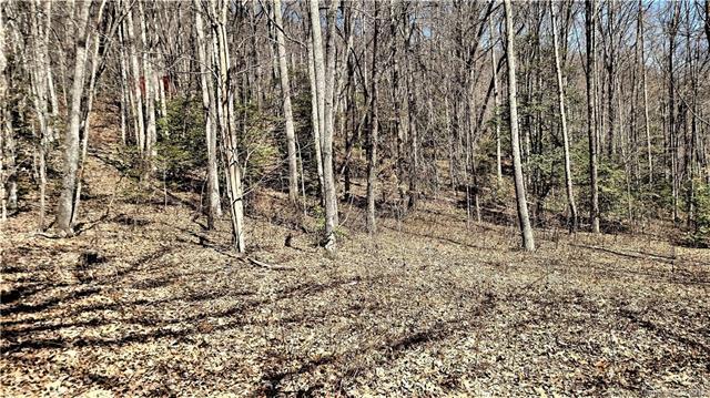0000 Parchment Lane 5-4, Sylva, NC 28779 (#3264845) :: Exit Mountain Realty