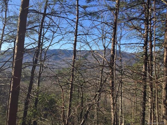 99999 Red Plum Lane, Black Mountain, NC 28711 (#3265577) :: Rinehart Realty