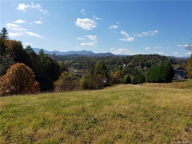 118 Timber Ridge Circle Lot 15, Leicester, NC 28748 (#3268563) :: Exit Mountain Realty