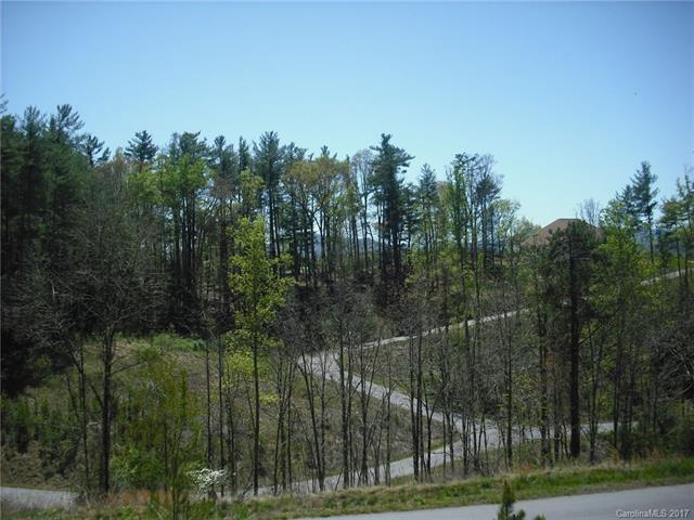 5 Hunting Ridge Lane Lot 11, Leicester, NC 28748 (#3268585) :: RE/MAX Four Seasons Realty