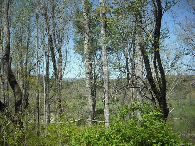12 Timber Line Drive Lot 3, Leicester, NC 28748 (#3268827) :: RE/MAX Four Seasons Realty