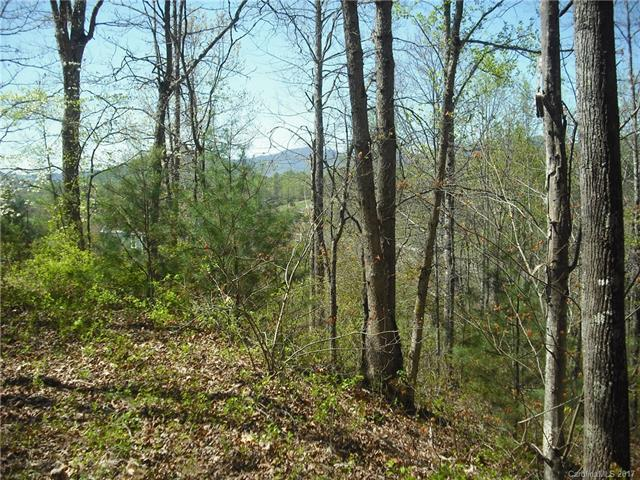 16 Cherry Top Trail Lot 6, Leicester, NC 28748 (#3268830) :: RE/MAX Four Seasons Realty