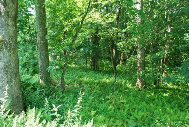 02 Steel Creek Road Tract2, Brevard, NC 28712 (#3270351) :: Exit Mountain Realty