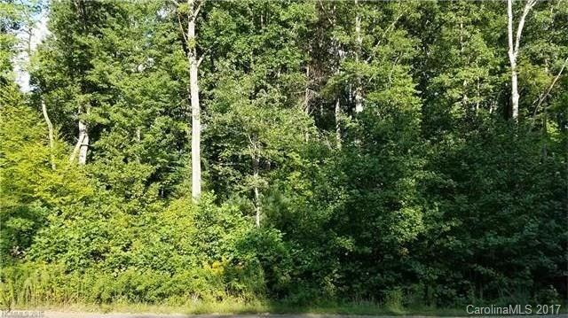 31 Oak Mountain Drive #4, Leicester, NC 28748 (#3271182) :: High Performance Real Estate Advisors