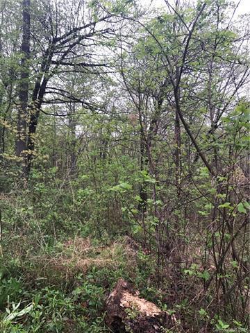64 Hidden Meadow Drive, Candler, NC 28715 (#3271881) :: Robert Greene Real Estate, Inc.